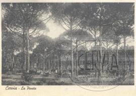 La Pineta