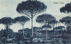 Cervia - Pineta