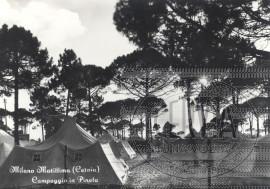 Campeggio in Pineta