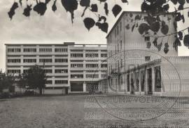 Colonia S. Giuseppe O.D.A. Modena