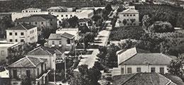 Pinarella Centro