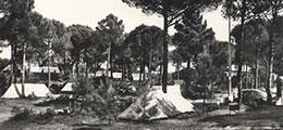 Pinarella Pineta